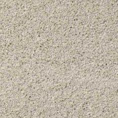 ELEGANT FORM III MIST Texture TruSoft® Carpet - STAINMASTER®