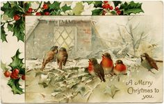 This beautiful vintage Christmas postcard features a group of birds perched on snowy tree branches. Some of the birds are singing. We can see a warm light glowing throughthe window of a brick hou…