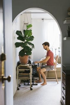 """A recent The New York Times article celebrated the fiddle leaf fig as the """"it"""" plant of interiors and we heartily agree. Perhaps the most appealing thing about it is the fact that they breathe fresh life into any room—no matter the decor style. We've gathered examples of the flexible fiddle-leaf fig fitting in and making real life rooms look good from our tours of real life homes."""