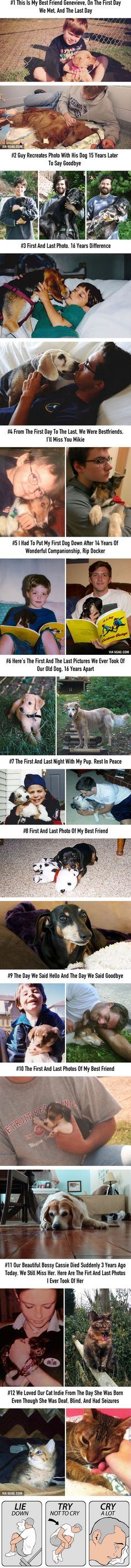 12 Heartbreaking First & Last Pics Of Pets That'll Make You Want To Hug Your Pet And Never Let Go