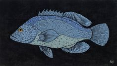 SHOAL 1 30 X 52.5 CM    EDITION OF 50 HAND COLOURED LINOCUT ON HANDMADE JAPANESE PAPER $700