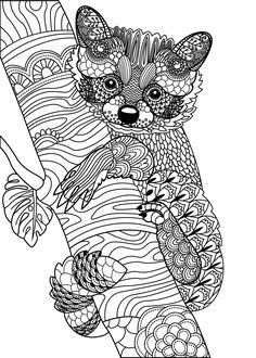819 Best Animal Coloring Pages for Adults images in 2019 | Coloring ...