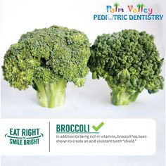 "Already touted as a ""miracle food"" for its high vitamin, fiber and calcium content, broccoli may just be a super food for oral health, as well. Researchers found that broccoli might be a top tooth protector thanks to the veggie's high amount of iron."