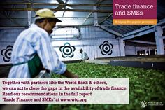 2016 News items - DG Azevêdo calls for action to provide trade finance for small businesses Trade Finance, News Apps, Acting, Events, Reading, Business, Happenings, Word Reading, Business Illustration