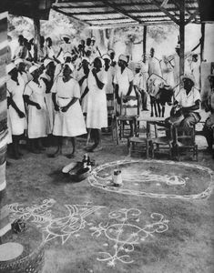 The ritual vodou sacrifice of a bull in a paristyle.