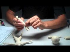 Introduction video (36:40) to Sculpting the Human Figure - Creating the Maquette- a basic figure that can then be bent into a different pose as needed. Doll Making Tutorials, Sculpting Tutorials, Clay Tutorials, Sculpting Classes, Sculptures Céramiques, Polymer Clay Sculptures, Polymer Clay Dolls, Sculpture Clay, Doll Videos