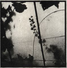 """Copperplate Photogravure with chine colle 2"""" X 2"""" Sergey Zlotnikov"""