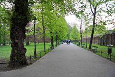 Reisebericht: Vier Tage in Krakau - Reisetipp von christine unterwegs Sidewalk, Krakow, Poland, Travel Report, Travel Advice, Viajes, Side Walkway, Sidewalks, Pavement