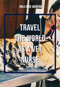 Have a love for animals and for traveling? A career as a veterinary nurse might be the perfect job for you! Find out the requirements and how to find jobs around the world to become a travel vet nurse abroad. Career College, Nursing Career, Jobs In Thailand, Wildlife Biologist, Job Satisfaction, Pet Vet, Work Abroad, Work With Animals, Best Careers