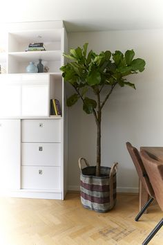 Lovely Cecile Daladier Vase No.8   Small White No Chimneys | Art/Pottery |  Pinterest | Pottery