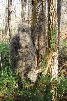 Bulls-Eye Ghillie Suit. Lightweight and breathable for comfortable wearing. Move with ease with this complete ghillie suit.