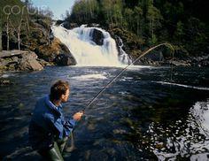 Fly fisherman fishing in Norwegian river