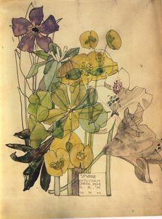 Charles Rennie Mackintosh Iris - Google Search
