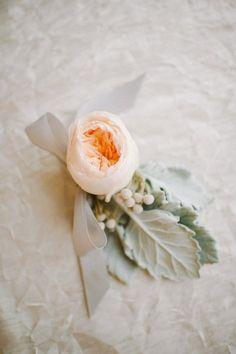 Peach Garden Rose Boutonniere brilliant peach garden rose boutonniere was a juliet adorned with