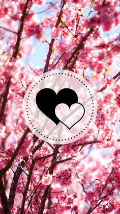 Destaque floral rosa/ destaque floral de cerejeira/ destaque feminino/ destaque bonito/ destaque insta rosa/ destaque floral insta/ destaque coração.