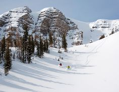 Fresh Tracks @Jackson Hole Mountain Resort #ski #skiing #snow #winter SkiMag.com