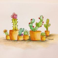 what's your favorite flower? cactus. #painting #365sketches #365sketch #doodles