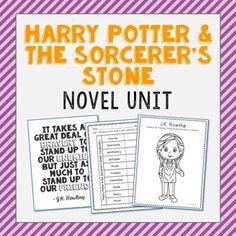 Harry Potter and the Sorcerer's Stone Essay Sample