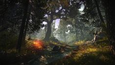 green leafed trees illustration The Witcher 2 Assassins of Kings #forest #nature screen shot The Witcher video games #1080P #wallpaper #hdwallpaper #desktop Witcher 2, Cloud Illustration, Mountain Illustration, Tree Wallpaper, Original Wallpaper, Forest Wallpaper, 1080p Wallpaper, King Picture, Mountain Wallpaper