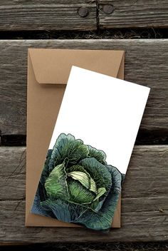 Hey, I found this really awesome Etsy listing at https://www.etsy.com/listing/114949514/cabbage-8-blank-flat-notecards-and