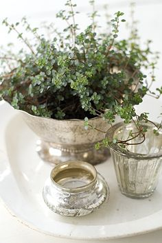 Thyme in antique silver footed bowl