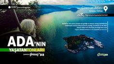 Giresun Adası http://kesfet.giresunblog.com/giresun-adasi/