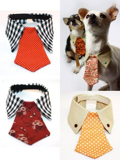 DIY or Buy: Dog Tie and Collar. For more pet DIY gift ideas go. - True Blue Me & You: DIYs for Creative People I srsly need 4 my dogs Dog Crafts, Animal Crafts, Animal Projects, Diy Projects, Project Ideas, Cute Sewing Projects, Sewing Tips, Pet Clothes, Dog Clothing