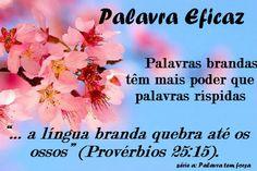 16_flores_e_flor+(2).jpg (488×325)