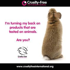 "Just because a company claims their products are ""green, natural and/or organic"" does NOT mean they are also CRUELTY FREE. LOOK FOR the 'Leaping Bunny' and 'Cruelty Free Bunny' signia. Stop Animal Testing, Stop Animal Cruelty, Vegan Quotes, Why Vegan, Cruelty Free Makeup, Vegan Beauty, Animal Welfare, Animal Rights, Going Vegan"