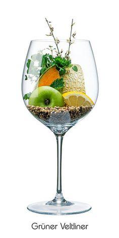 GRÜNER VELTLINER:  Apfel (grün), Zitrone, Blüte, Netzmelone, Kräuter, Pfeffer (schwarz + weiß), Minze
