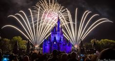 Top 10 Mind Blowing Experiences for a Weekend at Walt Disney World – DisneyDining