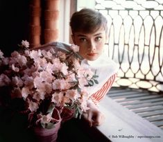 "rareaudreyhepburn: ""Audrey Hepburn photographed by Bob Willoughby in her apartment when she was performing on stage in Gigi, and her first trip to Hollywood after making Roman Holiday, Los Angeles,. Audrey Hepburn Born, Lily Collins Audrey Hepburn, Nastassja Kinski, Roman Holiday, Happy Women, Classic Beauty, Timeless Classic, True Beauty, Classic Hollywood"