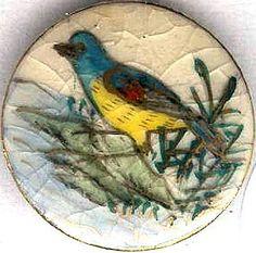 Satsuma Medium Yellow Breasted Bird on the Branches Button