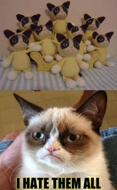 Funny Pictures – 32 Pics
