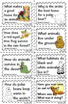 All about animals essential questions