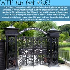 The Poison Garden - WTF fun facts - Oh my god Wtf Fun Facts, Funny Facts, Random Facts, Awesome Facts, Fascinating Facts, Interesting Facts, Random Stuff, Oh The Places You'll Go, Cool Places To Visit