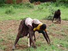 Farming is one of there Jobs in the Sub Saharan.