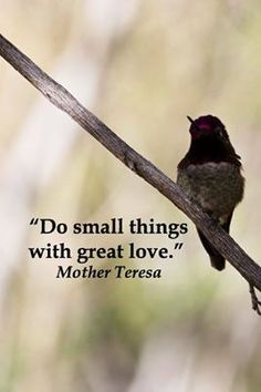 Do small things with great love ~ Mother Teresa