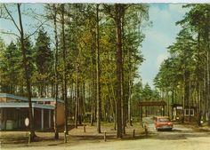 Unter Bäumen:  Auf dieser Postkarte parkt der rote Ford Taunus in einem...