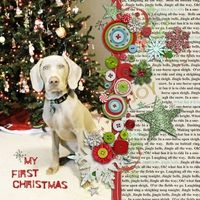 A Project by rebecca h from our Scrapbooking Gallery originally submitted 12/16/12 at 01:39 PM