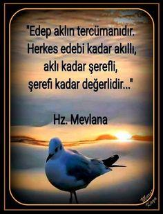 #mevlana #sözler  #corekotuyagi #güzelsözler Meaningful Words, Slogan, Allah, Spirituality, Humor, Quotes, Life, Quote, Pretty Words
