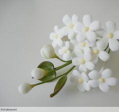 Jasmine Fillers are gumpaste sugarflower cake decorations perfect as cake toppers for cake decorating fondant cakes and wedding cakes. Sugar Paste Flowers, Icing Flowers, Buttercream Flowers, Fondant Flowers, Felt Flowers, Paper Flowers, Fondant Rose, Fondant Baby, Fondant Cakes