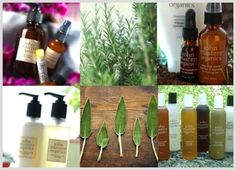 *NEW* John Masters Organics, luxury beauty that respects the earth!  These beautiful products are distributed around world, receiving praise in numerous magazines and admiration from celebrities such as Jake Gyllenhaal and Zooey Deschanel.  Check out their sumptuous products at Clementine Fields!