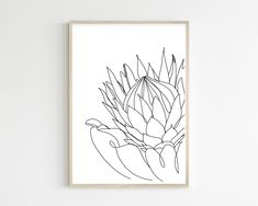 Protea print Printable wall art poster minimalistic line art prints scandinavian poster nordic drawing simple nursery decor above bed decor Protea Art, Protea Flower, Plant Sketches, Flower Line Drawings, Simple Wall Art, Floral Drawing, Fabric Painting, Watercolor Painting, Watercolors
