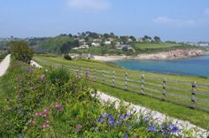 Coast Path between Swanpool and Stack Point, Falmouth