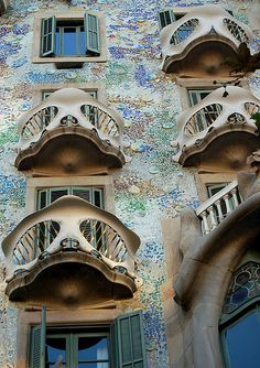 Focus on details. The golden see-through structures over armadillo pieces/patches on edges and fluid forms Casa Battló / Antoni Gaudí