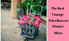 34 of the Best Vintage Wheelbarrow Planter Ideas
