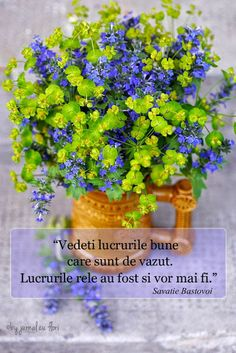 citat Savatie Bastovoi - atitudinea in fata vietii, a vedea lucrurile bune Flower Qoutes, Coffee Gif, Cool Words, Herbs, Friday, Google, Quotes, Summer, Quotations