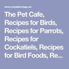 "The Pet Cafe, Recipes for Birds, Recipes for Parrots, Recipes for Cockatiels, Recipes for Bird Foods, Recipes for Bird Treats, Cooking for Pet Birds> <meta name=""keywords"" content=""recipes for birds, recipes for parrots, cockatiels, bird foods,recipes for bird treats,cooking,cockatiels, parrots,pet birds""> <meta name=""description"" content=""Recipes for Bird Foods and Bird Treats for Parrots,Cockatiels and Other Birds,""&g..."