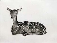 The glorious Kiki Smith and her intricately amazing etchings